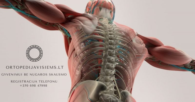 Zigmas Katauskas | Kompleksinis stuburo ligų ir traumų gydymas tempimu | Skausmas strėnose | Sergant skolioze | Išvarža